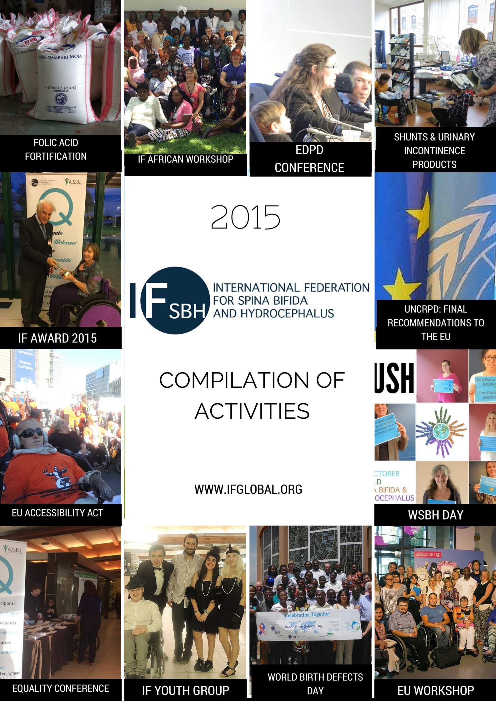Poster 2015 in review-activities