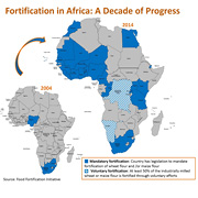 In 10 years time flour fortification with at least iron and/or folic acid increased significantly in Africa