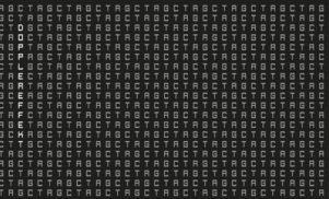 Stream 'Tetrahymena', from legendary electro unit Dopplereffekt's first release since 2007