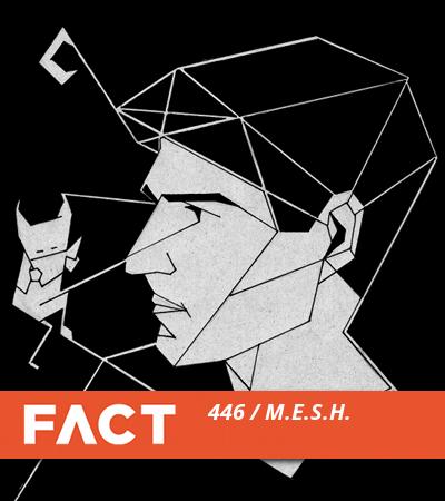 FACT mix M.E.S.H.