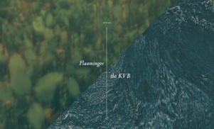 Flaamingos enlist Berlin duo KVB for split EP on felte, listen now