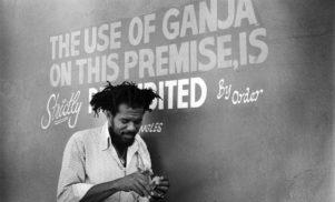 A beginner's guide to reggae vanguard Glen Brown