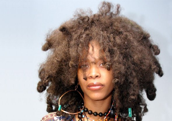 Erykah Badu to donate concert proceeds to help process untested rape kits