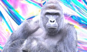 Harambe hologram to appear alongside Aphex Twin, Run the Jewels at Day For Night Festival [Updated]