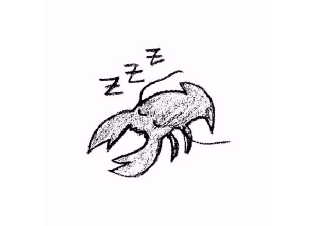 Lobster Theremin launches ambient offshoot, Lobster Sleep Sequence