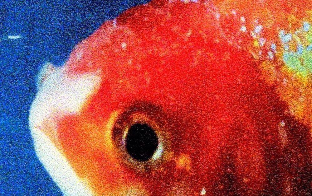 Listen To Vince Staples Fierce New Album Big Fish Theory