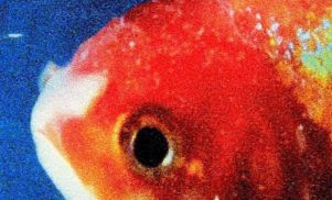 Listen to Vince Staples' fierce new album Big Fish Theory