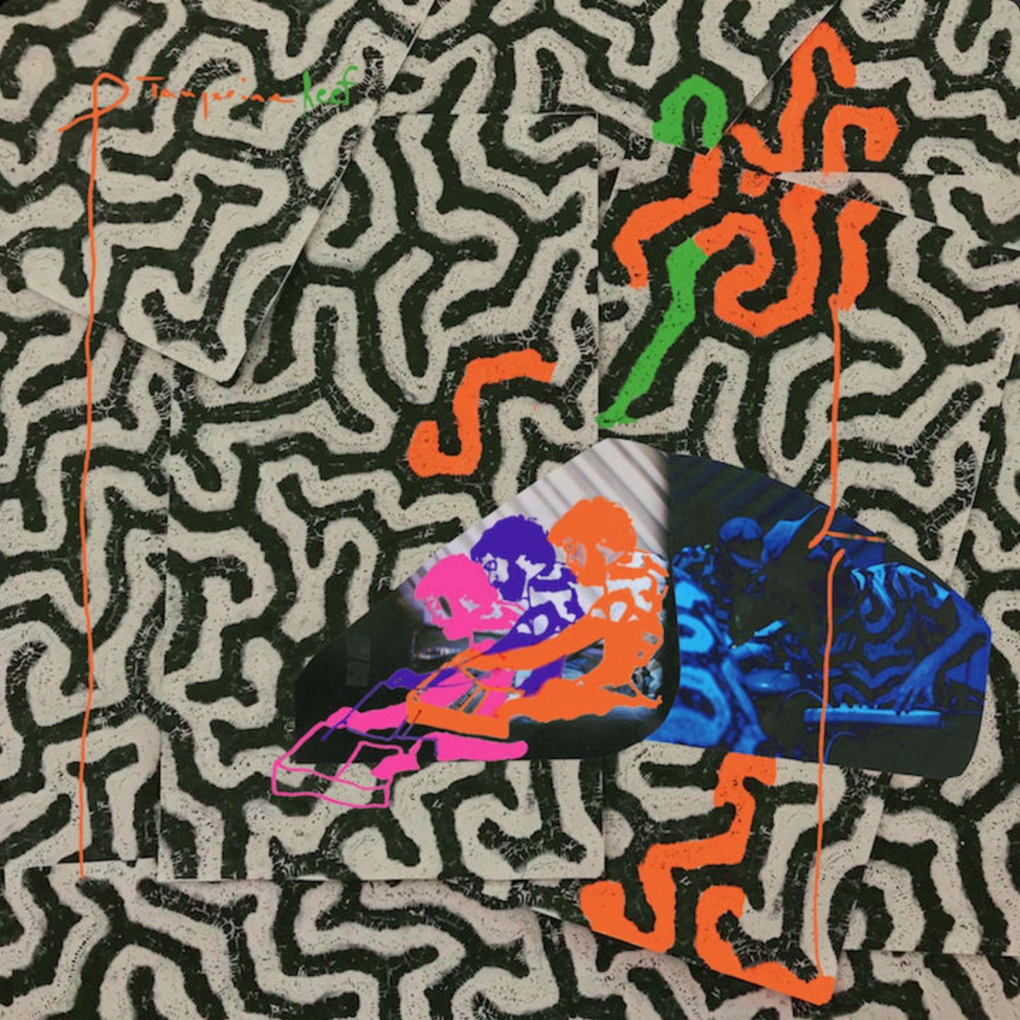 Animal Collective announce new audiovisual album Tangerine Reef