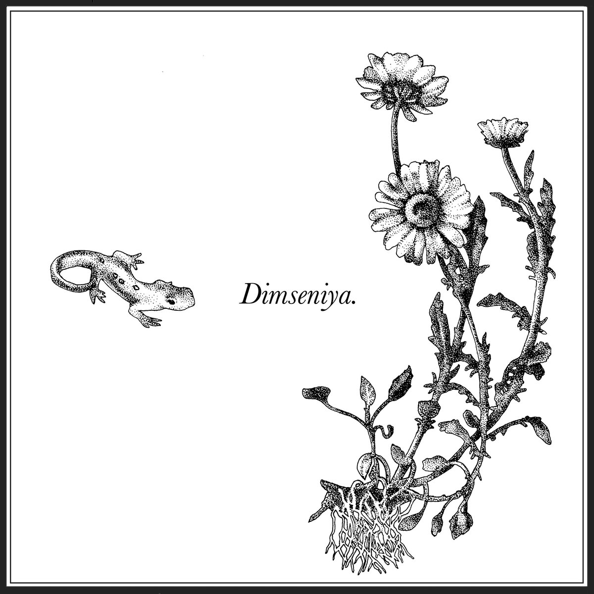 Aïsha Devi, RAMZI, Bergsonist and more featured on Dimseniya compilation