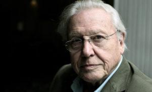 David Attenborough seeks producers for gamelan remix