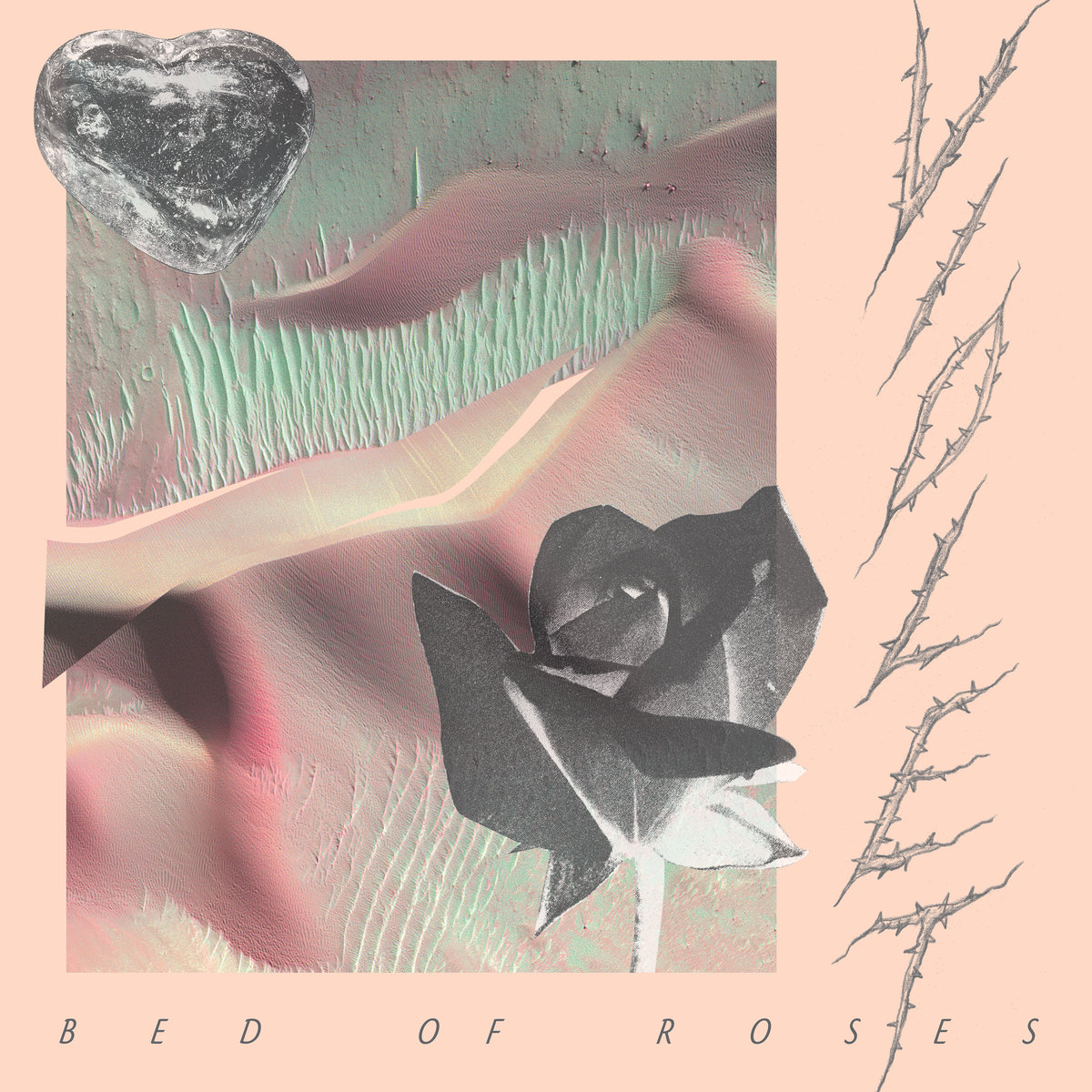 Violet recalls her teenage years on debut album, Bed of Roses