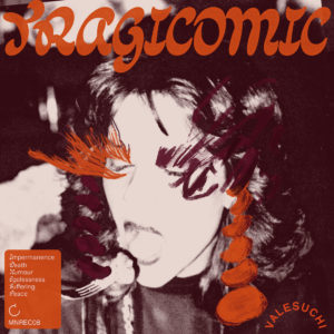 Valesuchi album cover