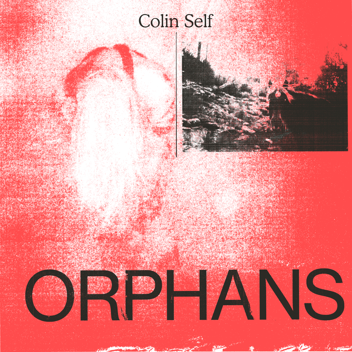 Colin Self to release Siblings companion EP, Orphans