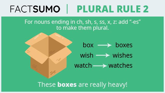 Plural-Rule-2