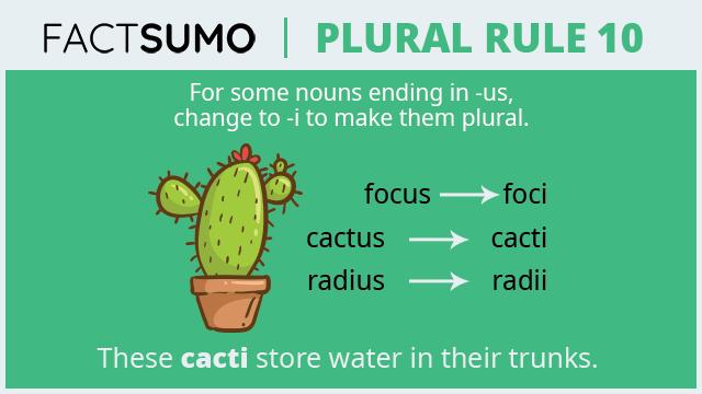 Plural-Rule-10