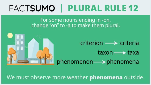 Plural-Rule-12