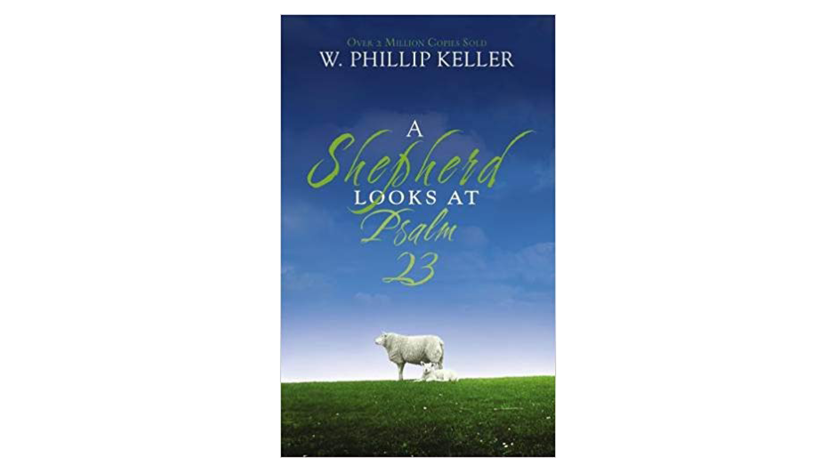 A Shepherd's Look at Psalm 23