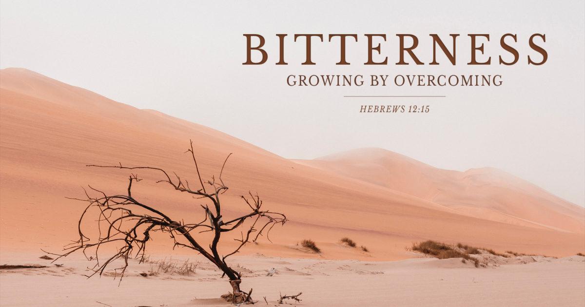 A Bitter Heart | Faith Ministries Resources