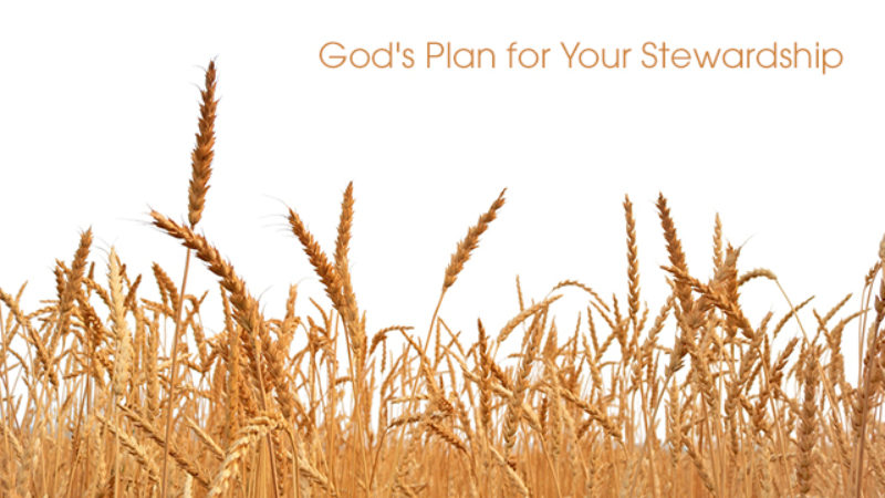 God's Plan for Your Stewardship