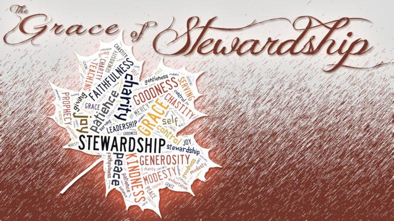 The Grace of Stewardship