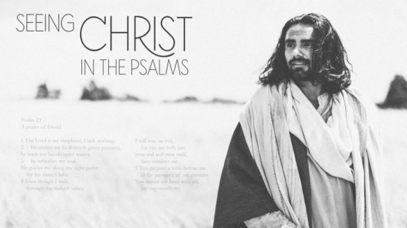 Seeing Christ in the Psalms