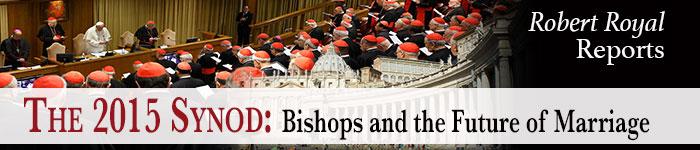 Synod-banner-700x150
