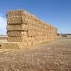 Wheaten hay. 8x4x3's 500m/t