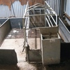 Farrowing Crates by Trevaskis Engineering