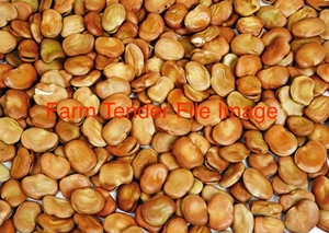 Highly Defective Gr 4 Or 5 Beans Wanted