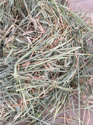 Top Quality Wheaten Hay in 8x4x3's Delivered Gippsland or WD