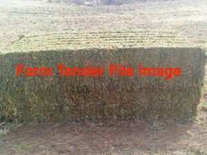 120 bales of Pure vetch 2013 season Hay