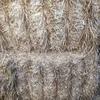 Header trail barley straw for sale
