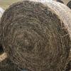 Clover Hay 135 rolls x 340kg