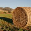 Round bales (type of hay neg)