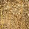 Oaten/Vetch Hay