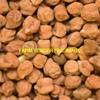 2mt Desi Chick Peas For Sale