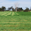 Latest research says to cut Lucerne every 6 weeks