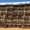 Barley & Vetch Hay 8x4x3 - 1,200 x 500 KG Approx Bales