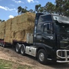 Export Surplus Oaten Hay For Sale Delivered to East Gippsland in Rolls or 8x4x3 Squares
