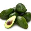 Safeguarding our smashing Avocado disease threat