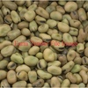 Upto 100/MT Faba Beans or Field Peas or alike Delivered for Stock Feed