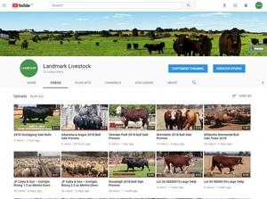 Landmark Livestock launches YouTube Channel