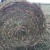 Excellent quality balansa round roll hay