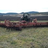 Hesston 2410 Disc Harrow with Prickle Chain