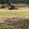 Sliding hay feeders