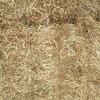 A1 New Season GREEN Vetch Hay Stacked READY