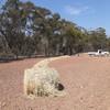1200 x Wheaten Hay 360kg 4x4-1/2 ft Rolls