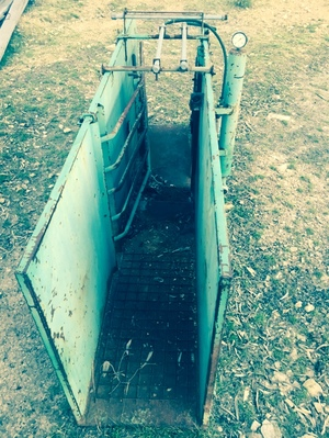 Sheep Jetting Race, In working condition. OFFERS
