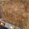 120 Bales of Rye & Clover Hay