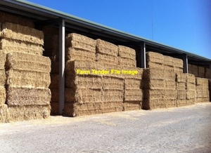 B Double Load of Wheaten Hay delivered Hunter Valley (price is ex Farm)
